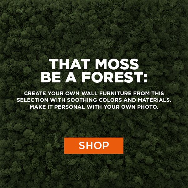 that moss be a forest DK.jpg